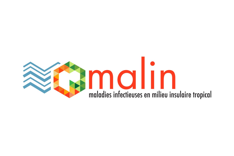 Projet Malin